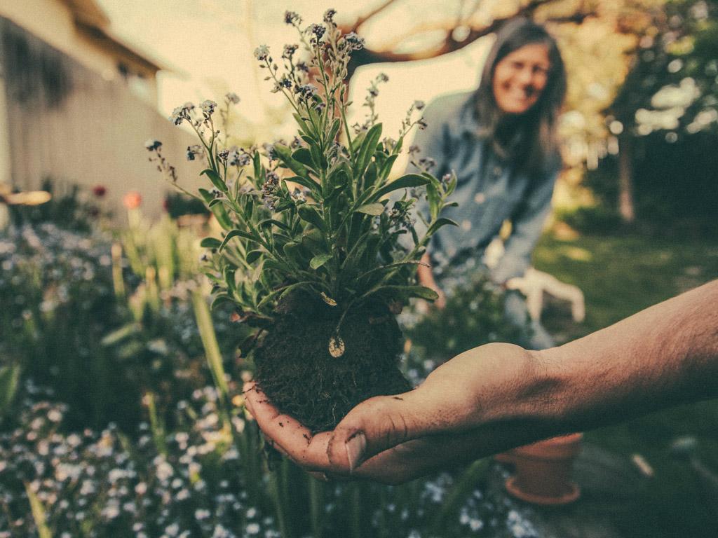 Aanbod voor lokale natuur en milieugroepen
