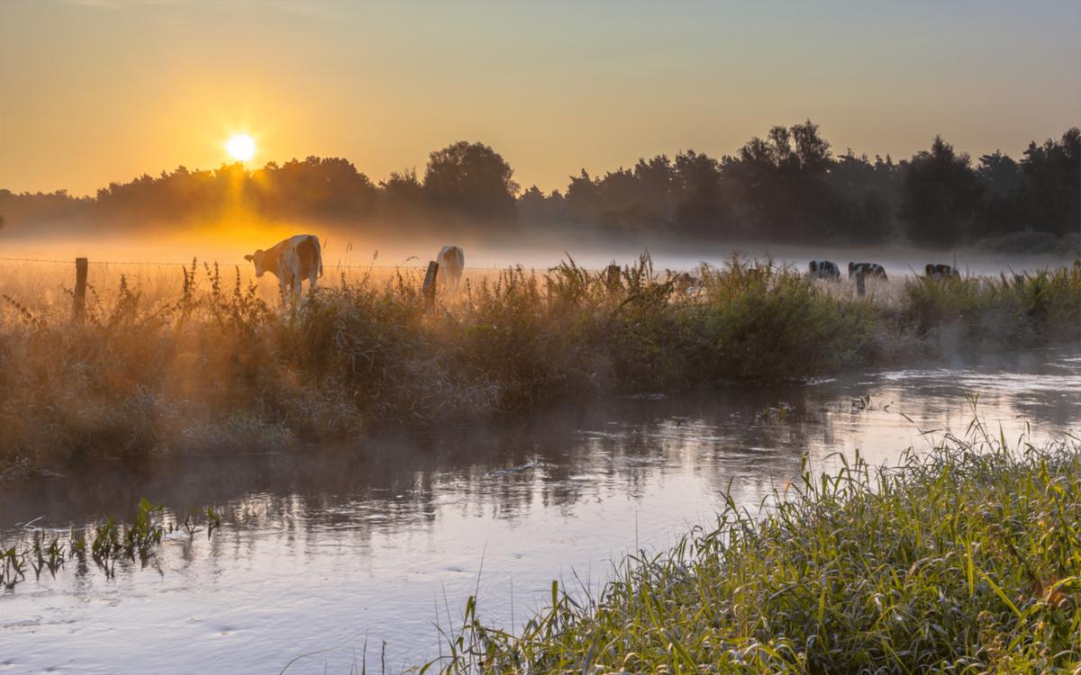 Natuur en milieufederaties helpen boeren op weg naar een duurzame landbouw