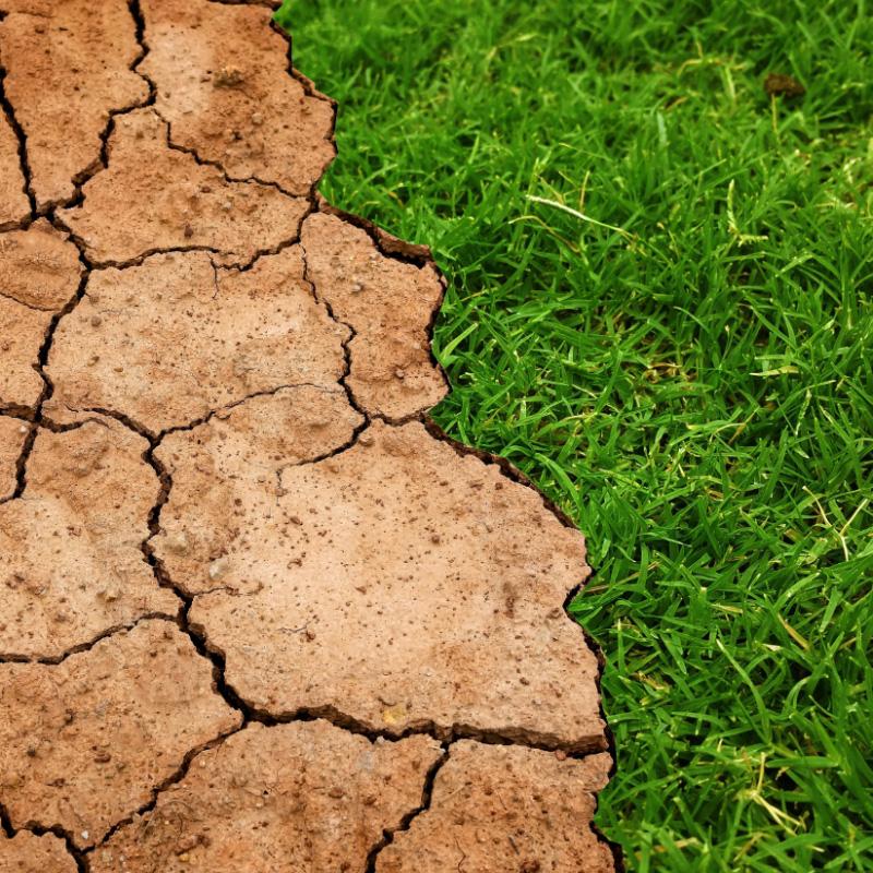 Ontkennen we klimaatverandering ontkenners!?