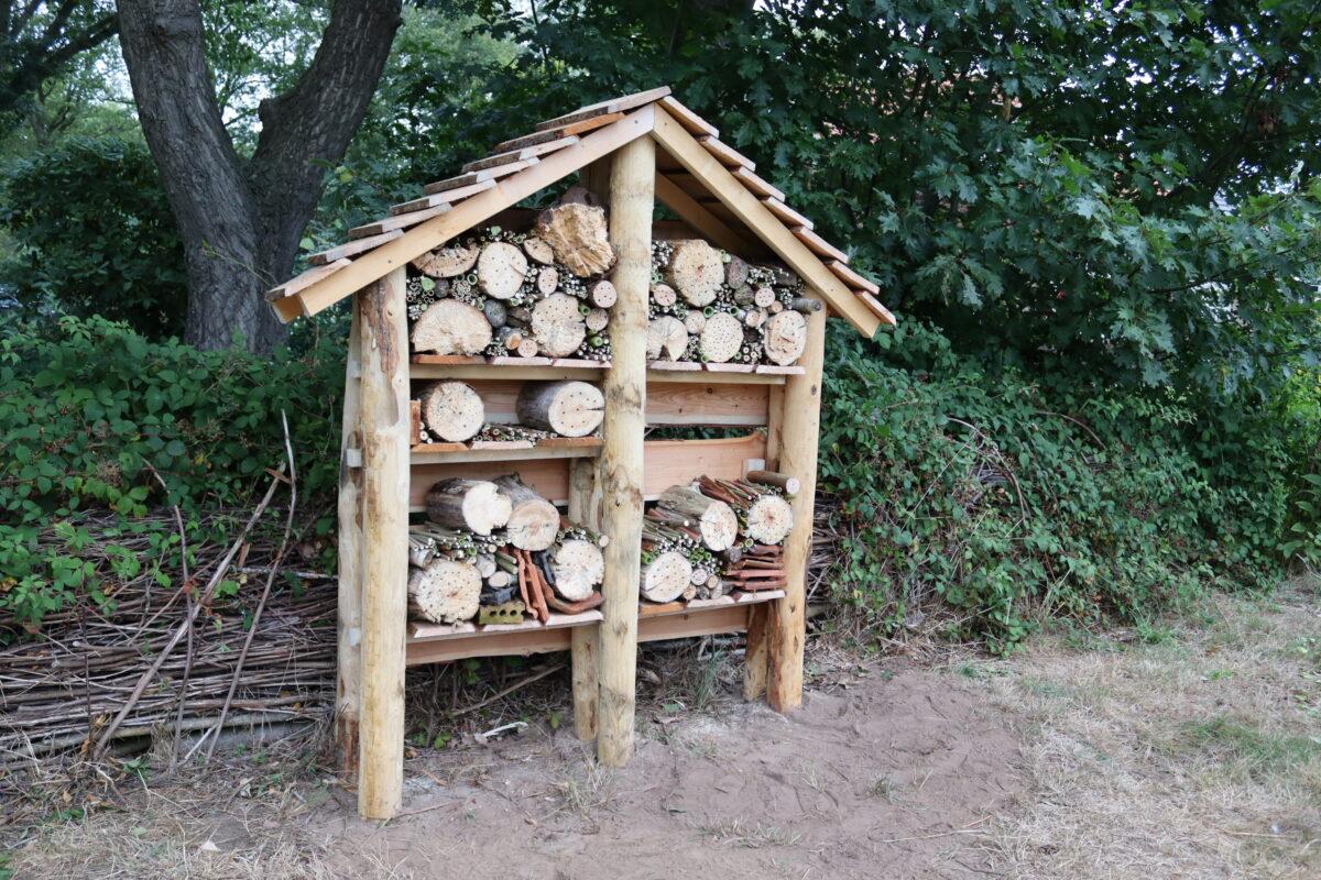 Leerlingen van het Facet bouwen eigen insecten- en bijenhotel