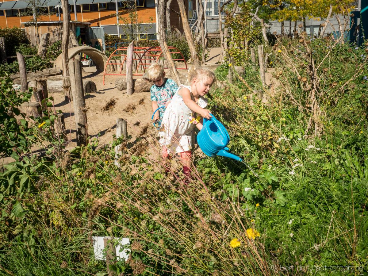 Subsidies en fondsen om een groen schoolplein te realiseren