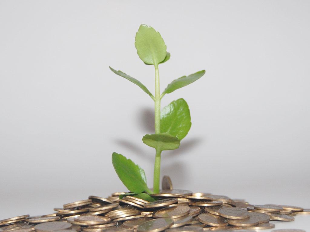 Tips voor financiering lokale groene initiatieven