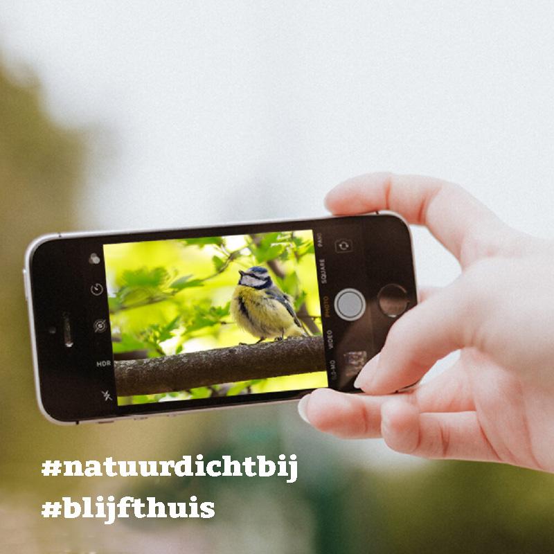 Prachtig! Inwoners uit Overijssel delen massaal foto's van de #natuurdichtbij