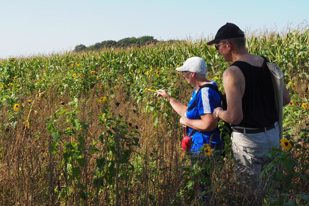 Vrijwilligers helpen biodiversiteit in kaart te brengen