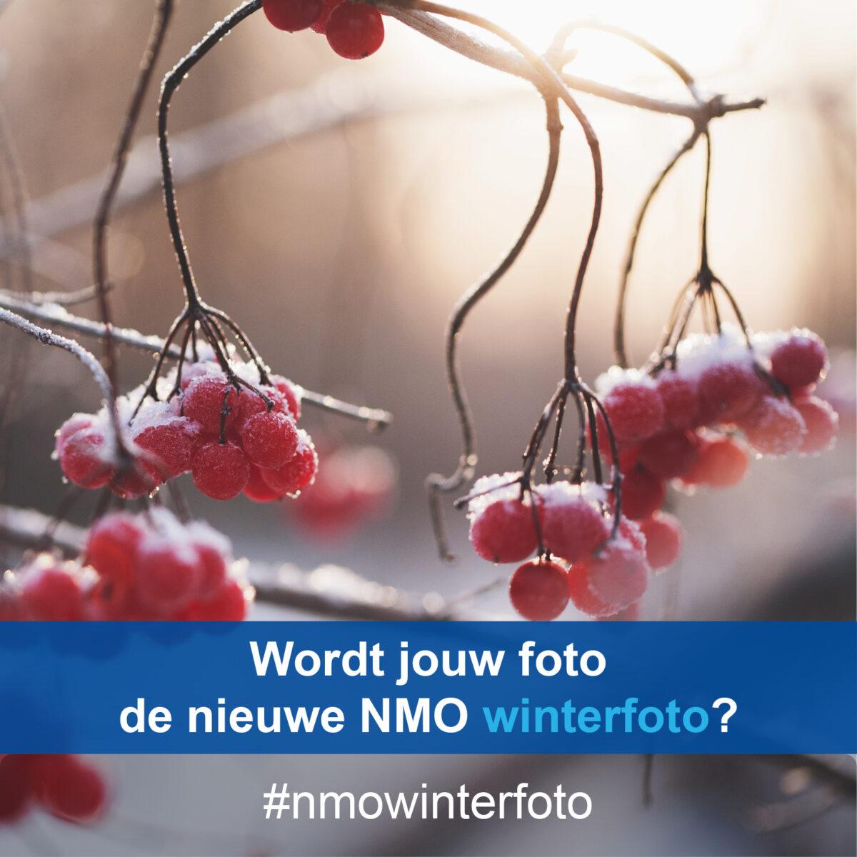 FOTOCHALLENGE! #NMOwinterfoto
