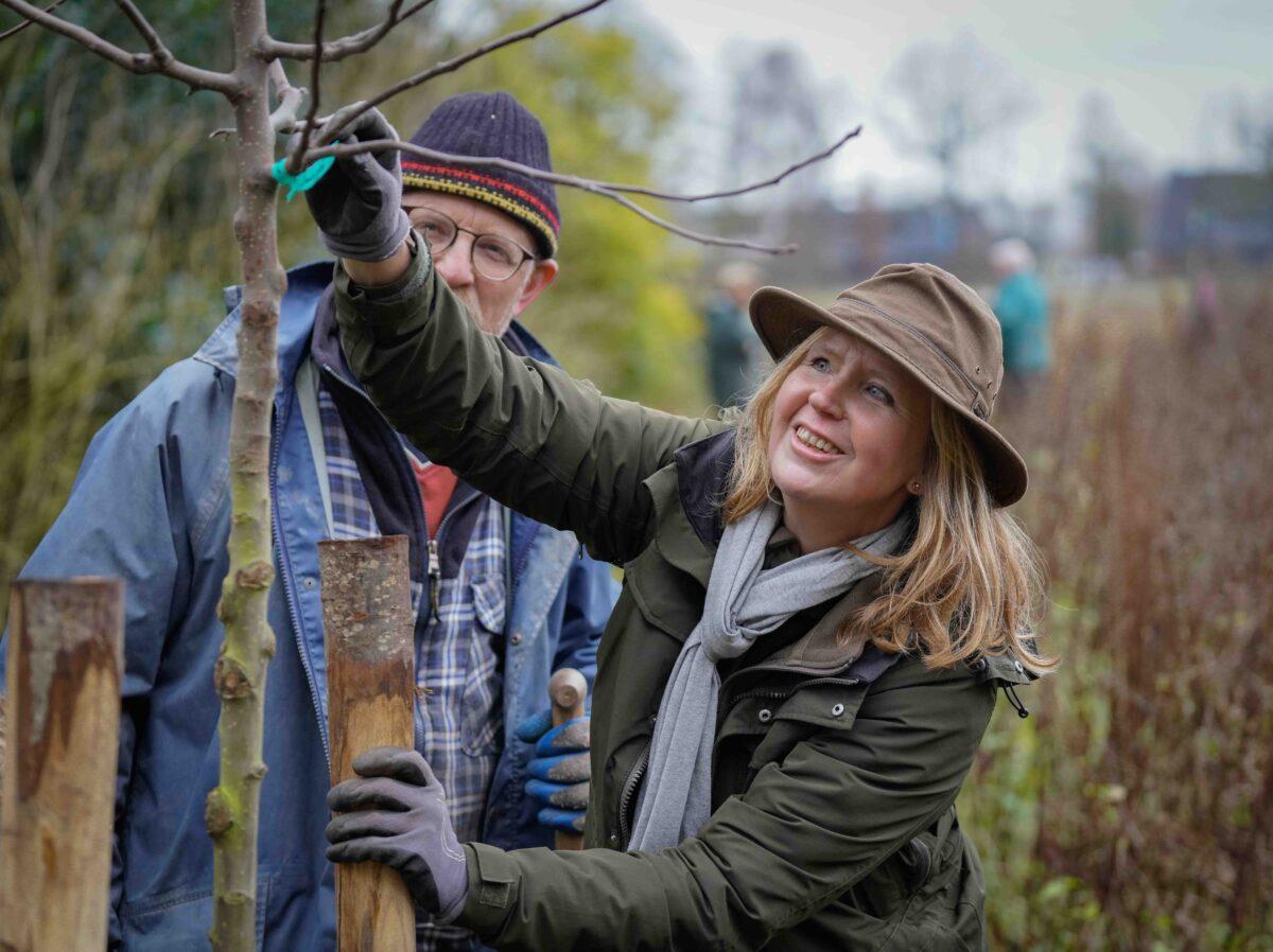 Bomensubsidie van provincie Overijssel gaat weer open